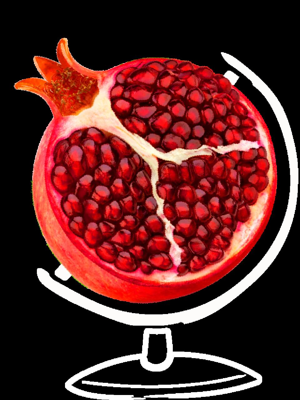 Pom Globe